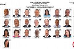 candidatosadiputadoscirc3pld