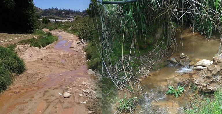 Photo of Constanza marcha contra destrucción del río Tireo