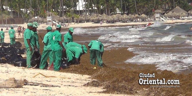 Photo of Las algas invaden otra vez las playas del Este de R. Dominicana + Vídeo