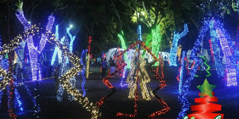 """Photo of Pocos conocen este drama que esconde  el parque de las luces """"Vive la Navidad"""""""