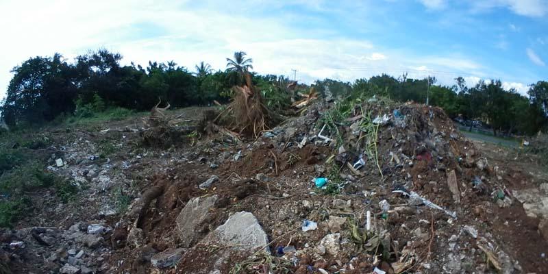Photo of ¿Que es esto? ¡Ahora arrasan con los árboles en El Pensador!