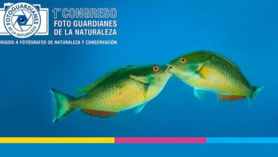Photo of Celebran Primer Congreso sobre fotografía de conservación